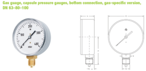 2-4-300x147 Jual Pressure Gauge Marshall