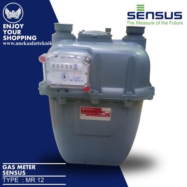 Gas Meter Sensus